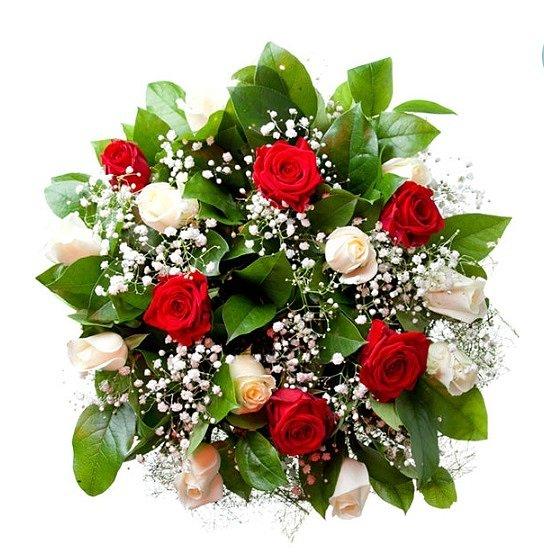 15 красных и белых роз